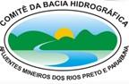 comite de bac hidro rio paraibuna
